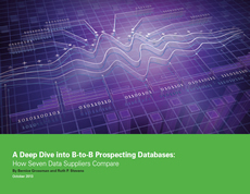 A Deep Dive into B-to-B Prospecting Databases
